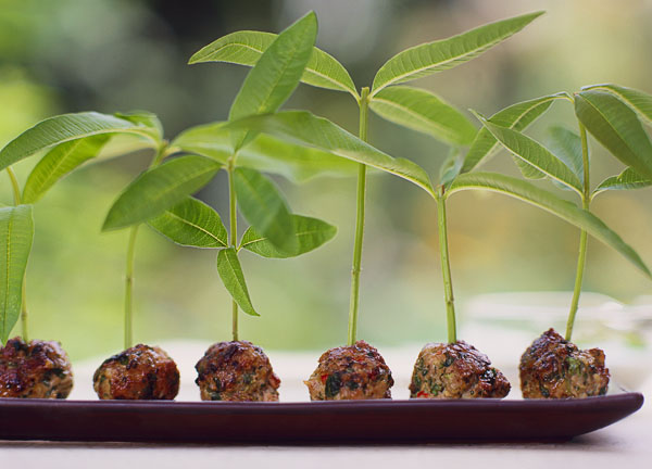 Outdoor, spicy verbena meatballs