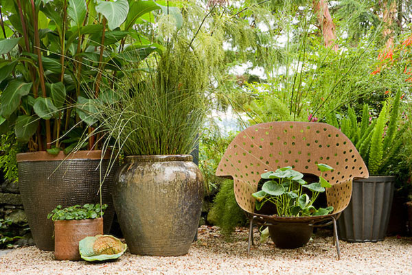 residential, garden, large pots, plants