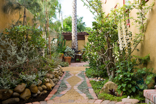 residetial, garden, path, walkway, cactus, plants