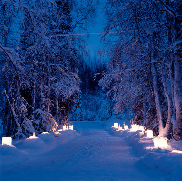 residential, driveway, snow, lanterns, trees