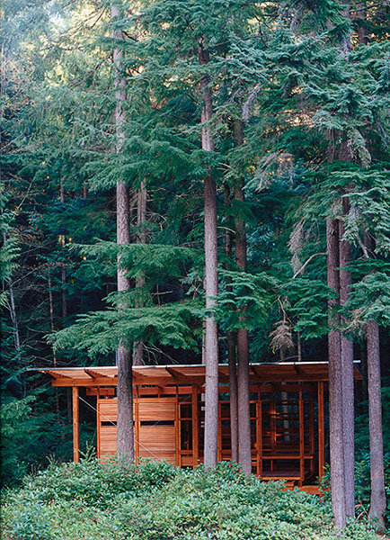 residential, spa, sauna, wood, trees